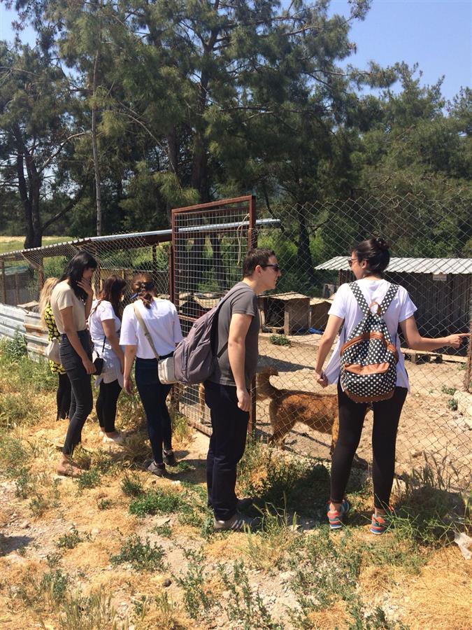 Şopengazi Köpek Bakımevi Ziyaret Edildi