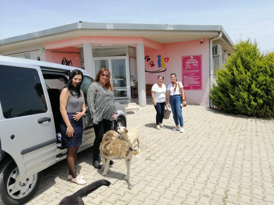 Hayvan Hakları Komisyonumuz Barınakları Ziyaret Ediyor